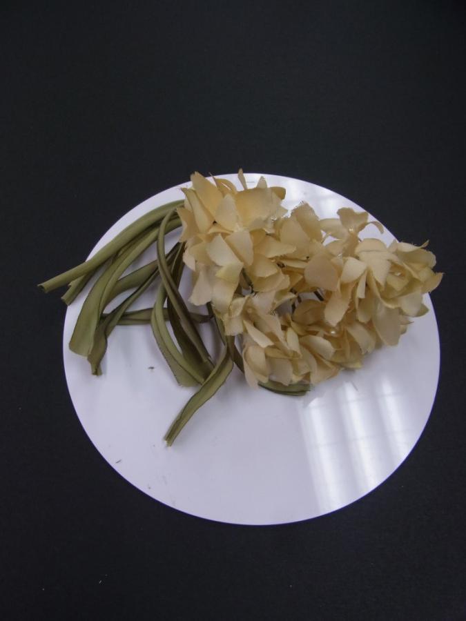 cORsaGeYE96a